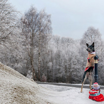 Dog dressed as santa on the road side